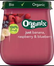 Детское питание (банан, малина, черника) Organix LUOMU c 6мес. 120гр