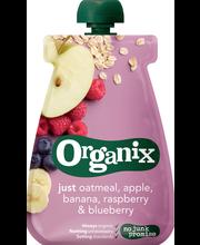 Детское питание каша с фруктами Organix LUOMU c 6мес. 100гр